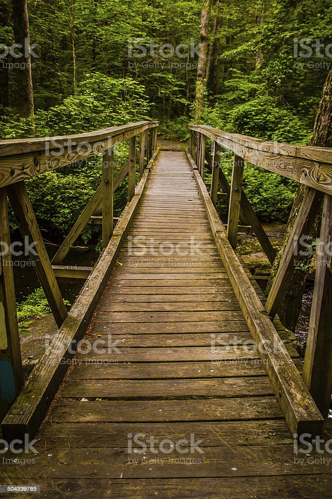 Forest Bridge royalty-free stock photo