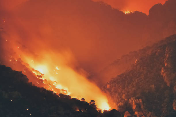 Forest burning at a mountain in Greece. Fire destroying nature. stock photo