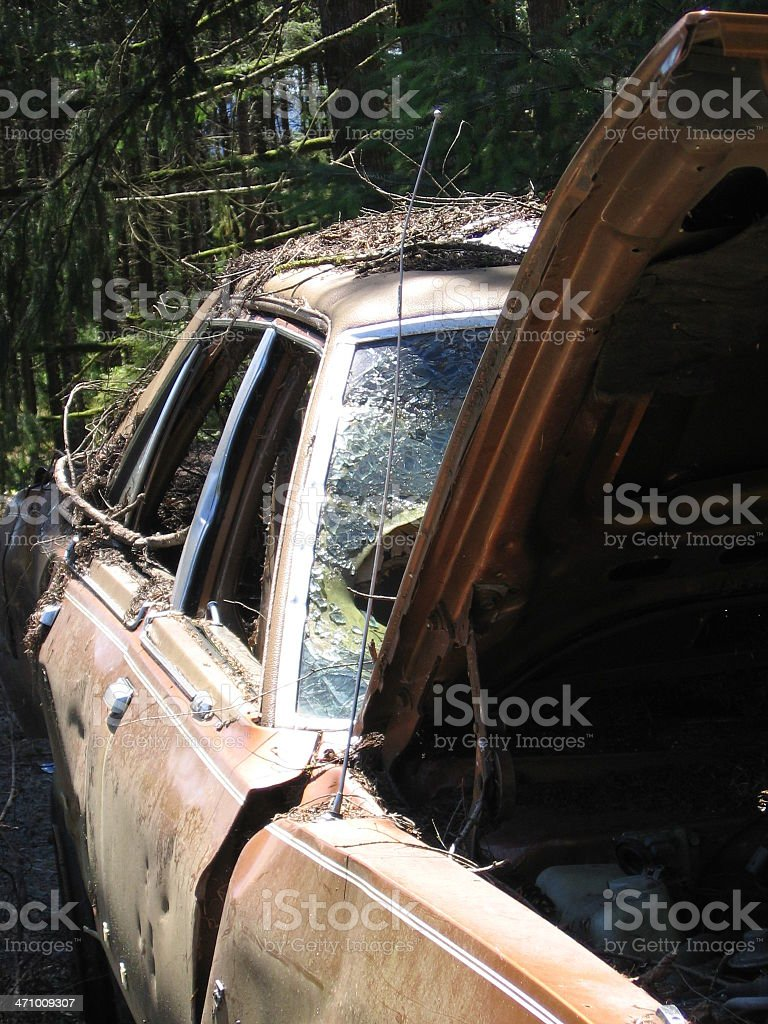 Forest Car royalty-free stock photo