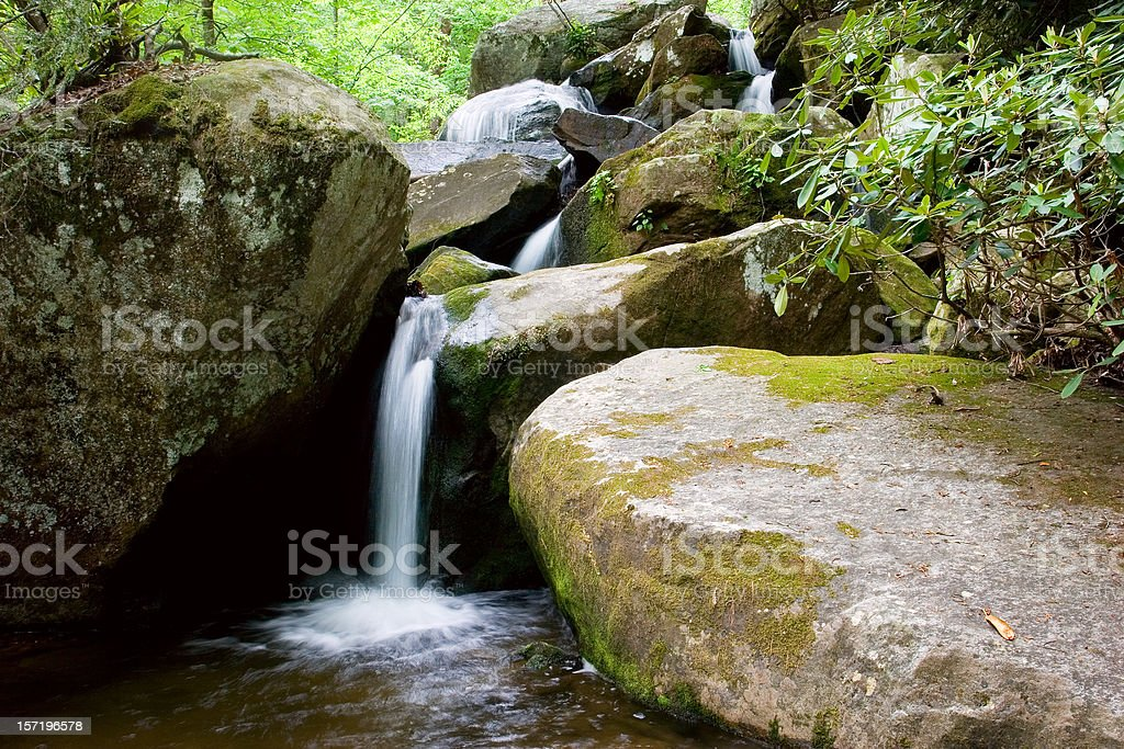 Forest Cascade royalty-free stock photo