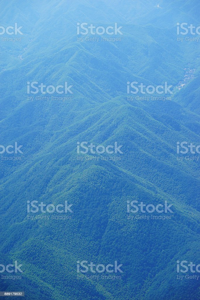 Forest cover on the hill. View from above stock photo