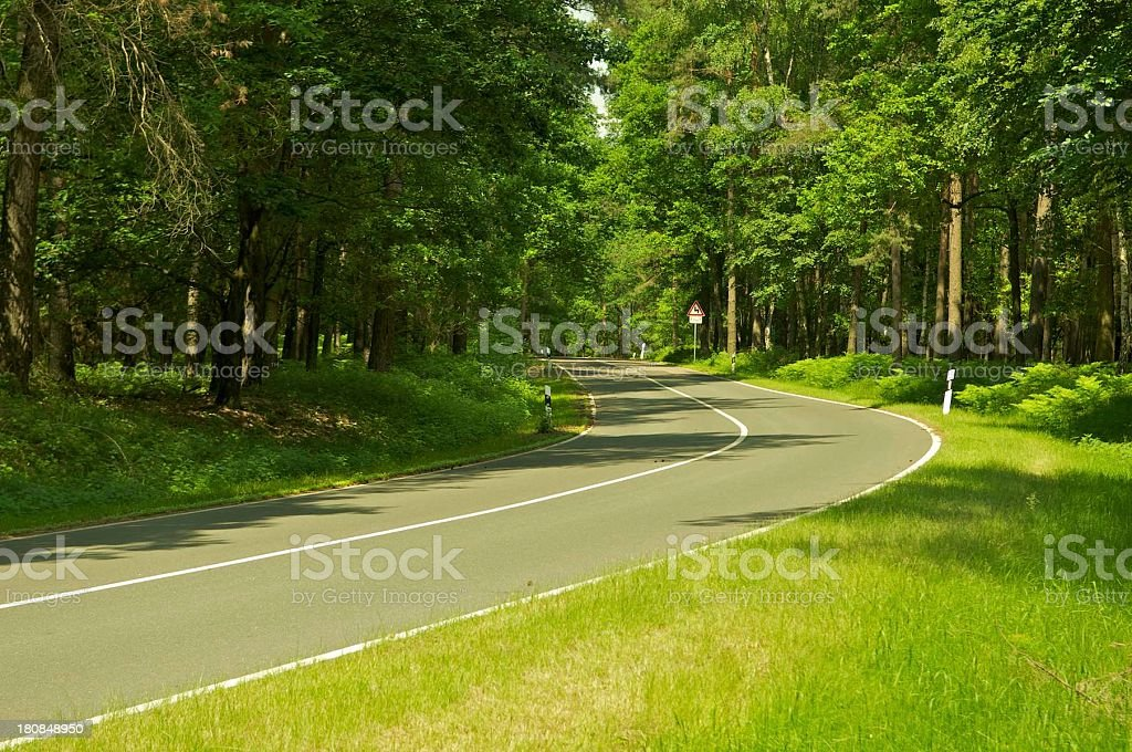 forest curve royalty-free stock photo