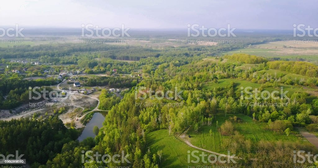 forest deciduous and coniferous. top of trees. green. nature. Clean Air. stock photo