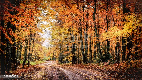 A winding country road through a forest of spectacular fall colors. This tranquil woodland drive goes through a tunnel of trees along the scenic Covered Road of Michigan's Houghton County in the state's Upper Peninsula. Autumn background with copy space.