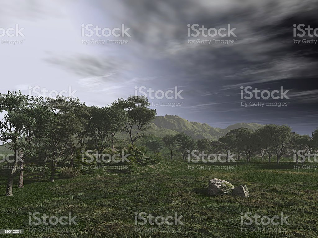 Forest Edge royalty-free stock photo