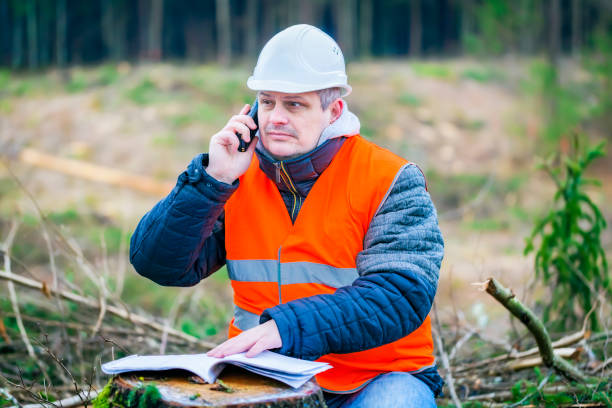 Forest engineer talking on a cell phone in the forest Forest engineer talking on a cell phone in the forest forester stock pictures, royalty-free photos & images