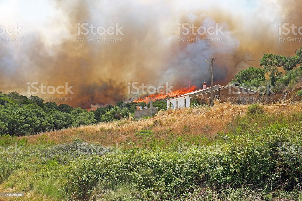 Forest fire burning a house in Portugal stock photo