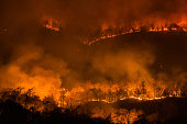 Forest fire burning, Wildfire at night in Chiangmai, Thailand
