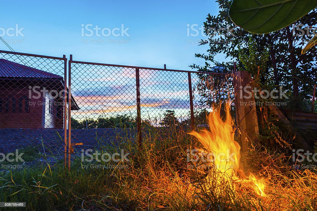 Forest Fire Flames stock photo