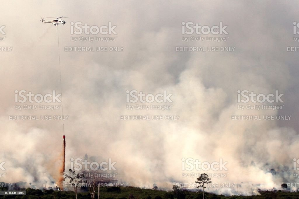 Forest fire in Indonesia stock photo