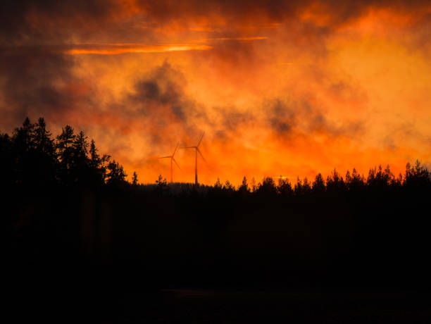 Forest fire in night time. Windmills in background. Dark image with silhouette of tree. stock photo