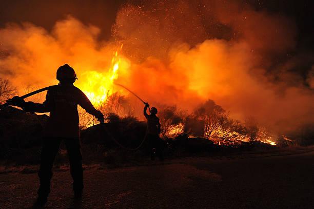 forest fire , incendio florestal - bosbrand stockfoto's en -beelden