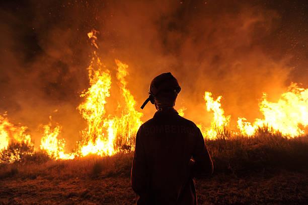 forest fire, incendio florestal - waldhandwerk stock-fotos und bilder