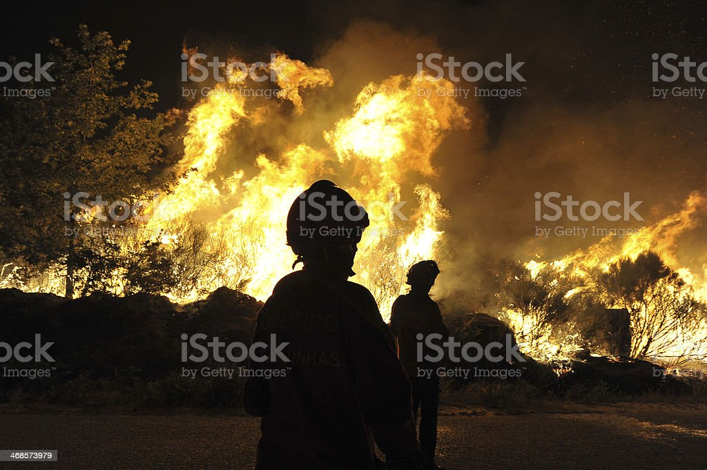 Forest fire , Incendio Florestal royalty-free stock photo