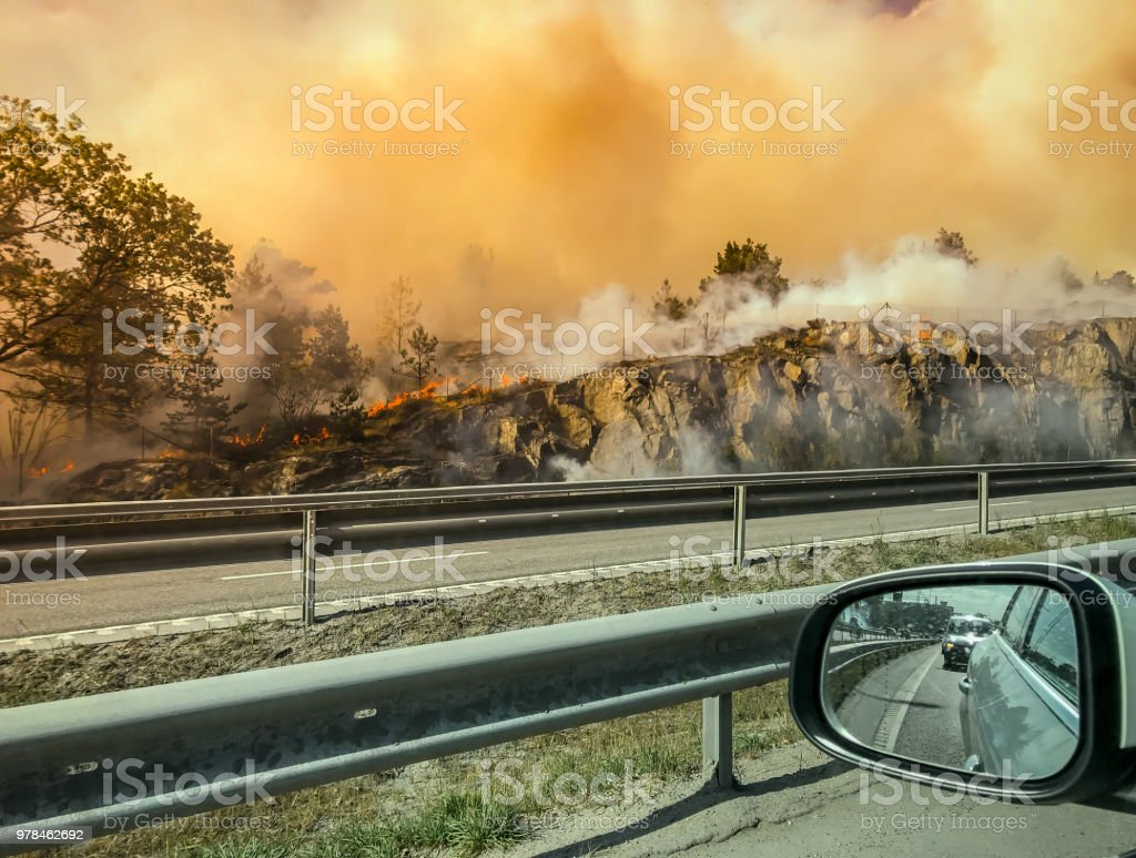 Forest fire near road or hightway seen from car. Forest fire near road or hightway seen from car. Accidents and Disasters Stock Photo