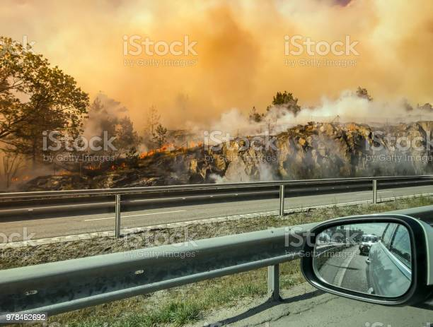 Forest Fire Near Road Or Hightway Seen From Car Stock Photo - Download Image Now