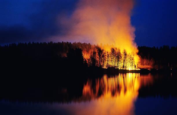 feu de forêt - desastre natural photos et images de collection