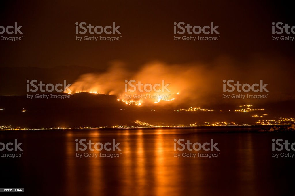 Forest fire, natural disaster, captured by night.
