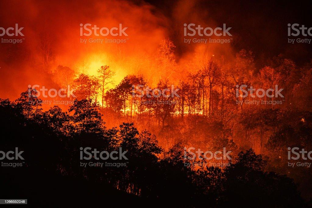 大きな煙で山の夜の時間に森林火災の山火事 - オレンジ色のロイヤリティフリーストックフォト
