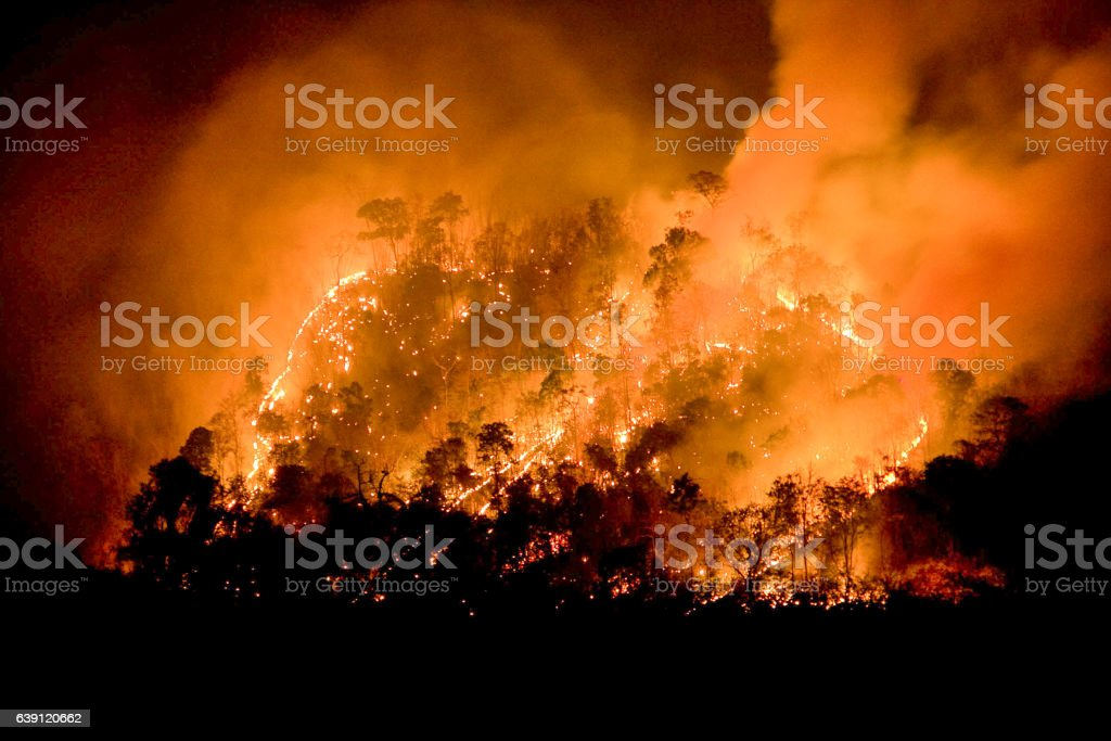 Forest Fire/Fire Mountain stock photo