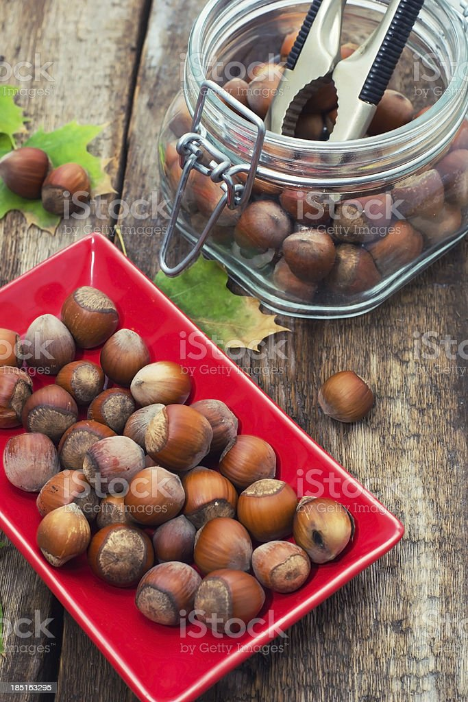 Forest hazelnuts royalty-free stock photo