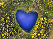 Forest heart shaped lake with sky reflection top aerial view. Wildlife and nature conservation theme