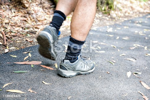 A close up of men's feet, hiking in the rain forest in Tasmania Australia