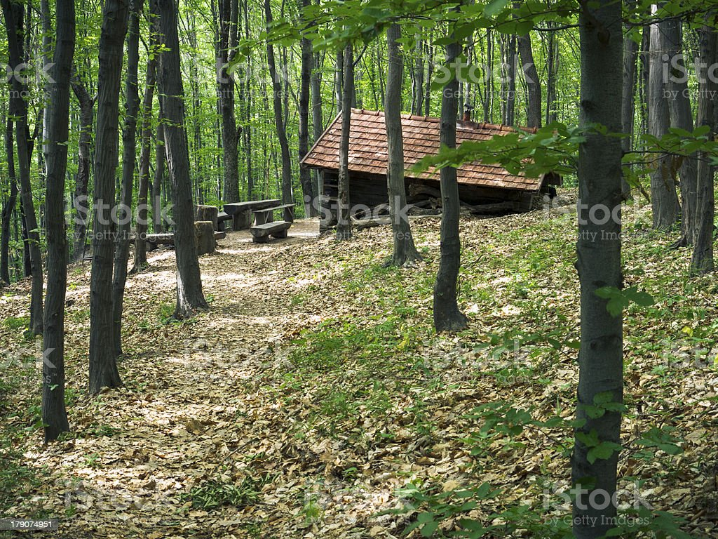 Forest hut. royalty-free stock photo