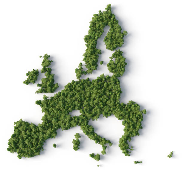 Forest in europe union map shape stock photo