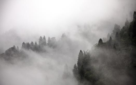 Mountains in mist stock photos