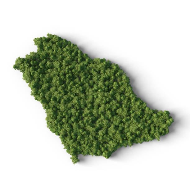 Forest in Saudi Arabia map shape stock photo