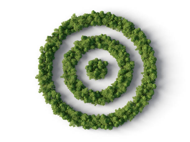 Forest in target shape stock photo