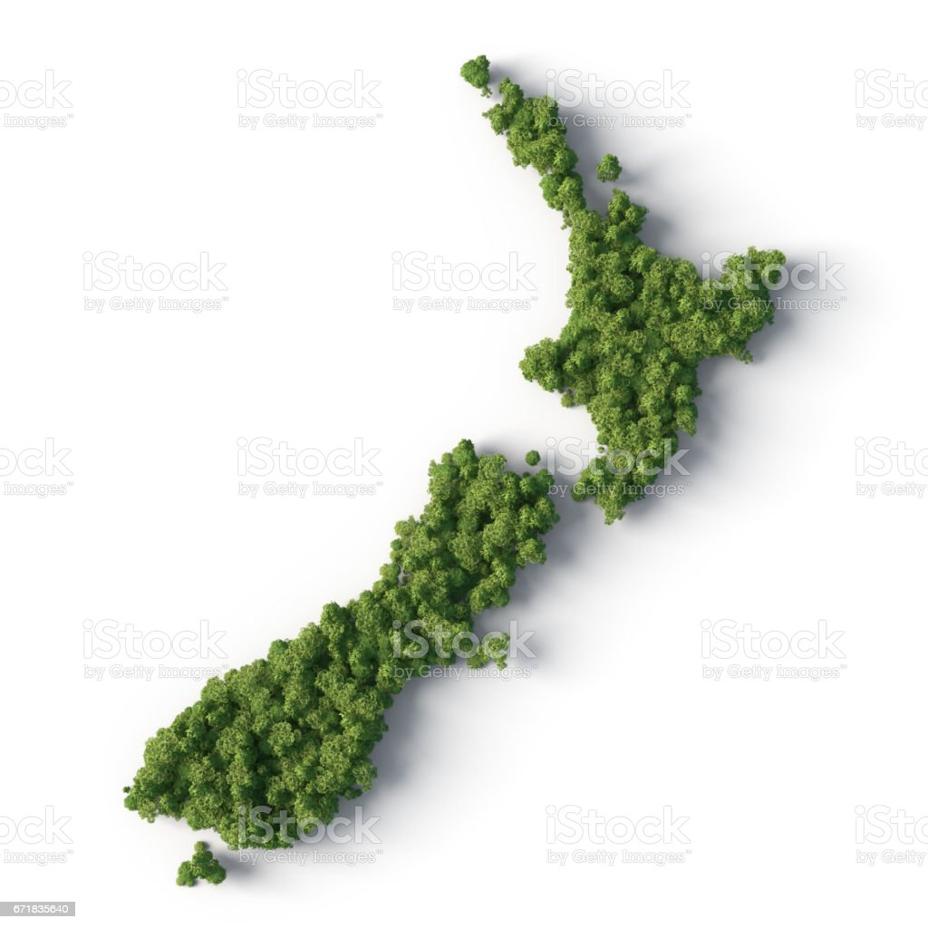 Forest in the new zealand shape stock photo
