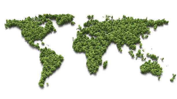 forest in the world map stock photo