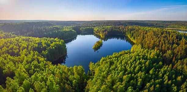 jezioro leśne (zdjęcie lotnicze) - białoruś zdjęcia i obrazy z banku zdjęć