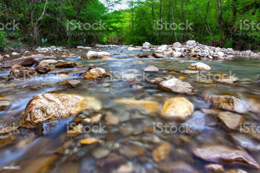 Forest landscape in the vicinity of Sochi, Russia. stock photo