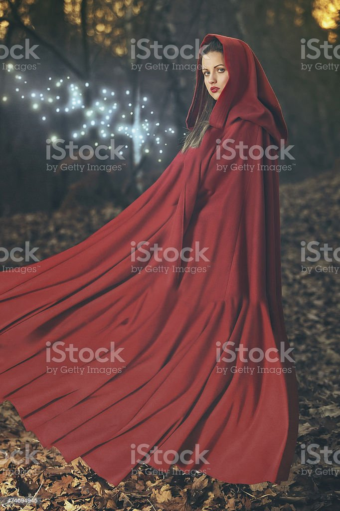 Forest magic stock photo