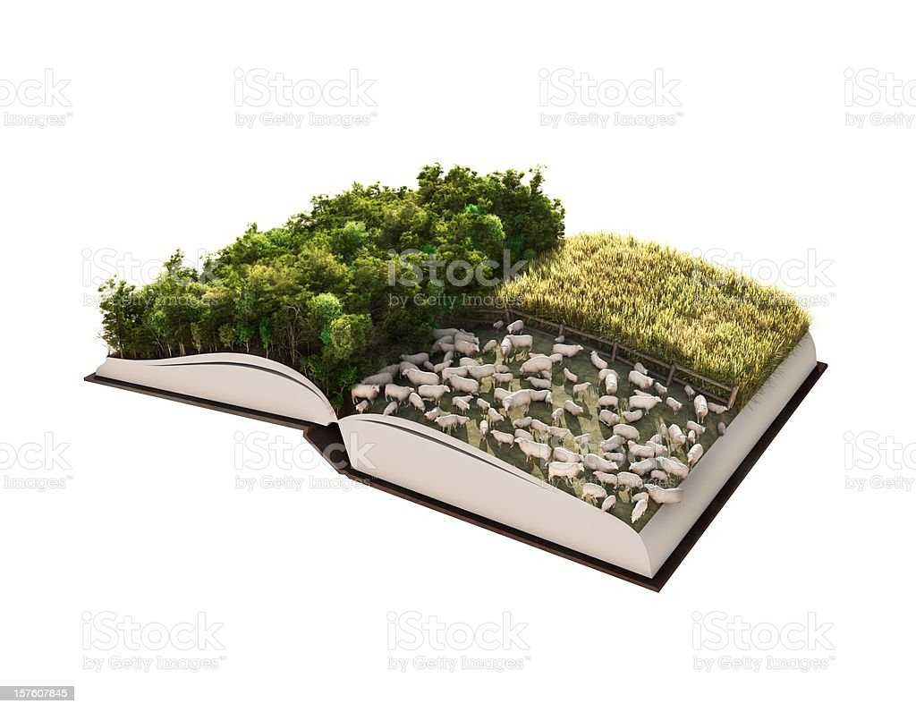 Forest Management Story royalty-free stock photo