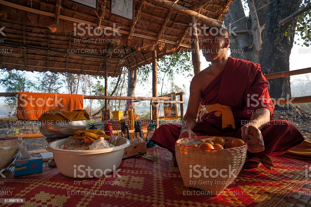 Forest Monk stock photo