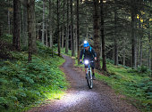 A man concentrating as he bikes along a forest mountain biking trail in Scotland at dusk.