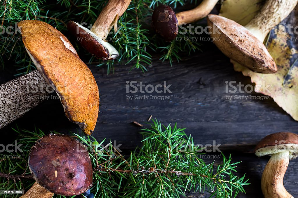Forest mushrooms on rustic wooden table. stock photo