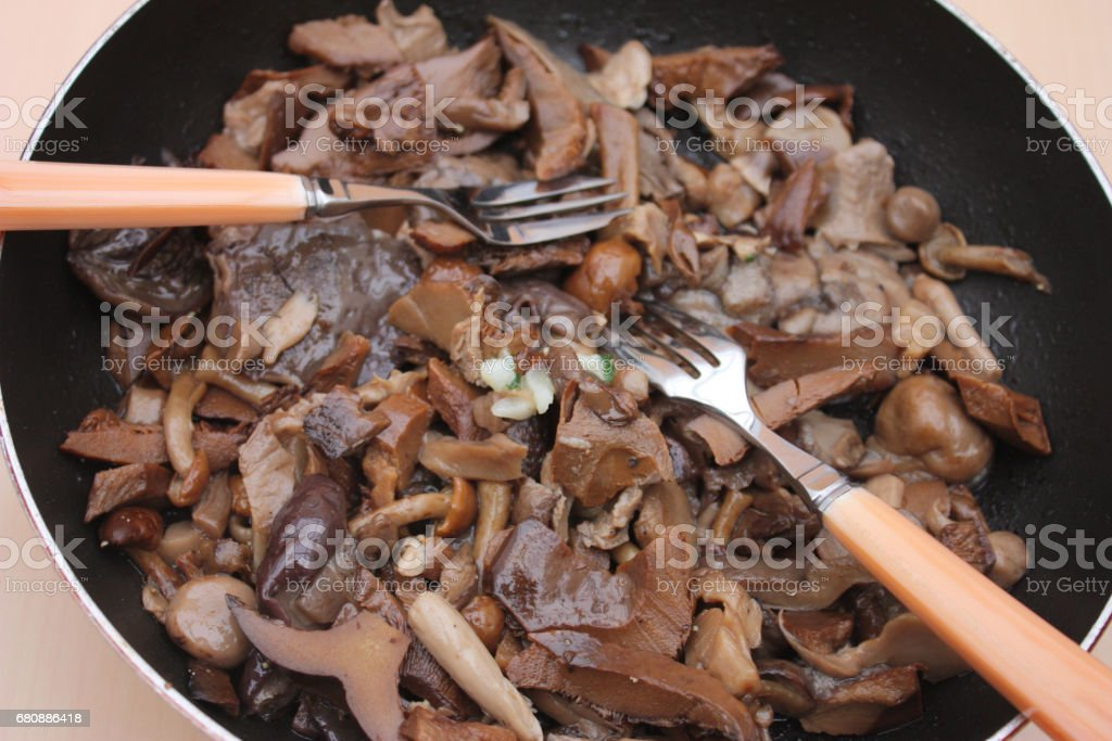 Forest mushrooms royalty-free stock photo