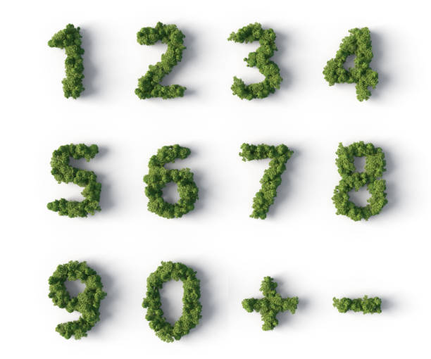 forest numbers stock photo