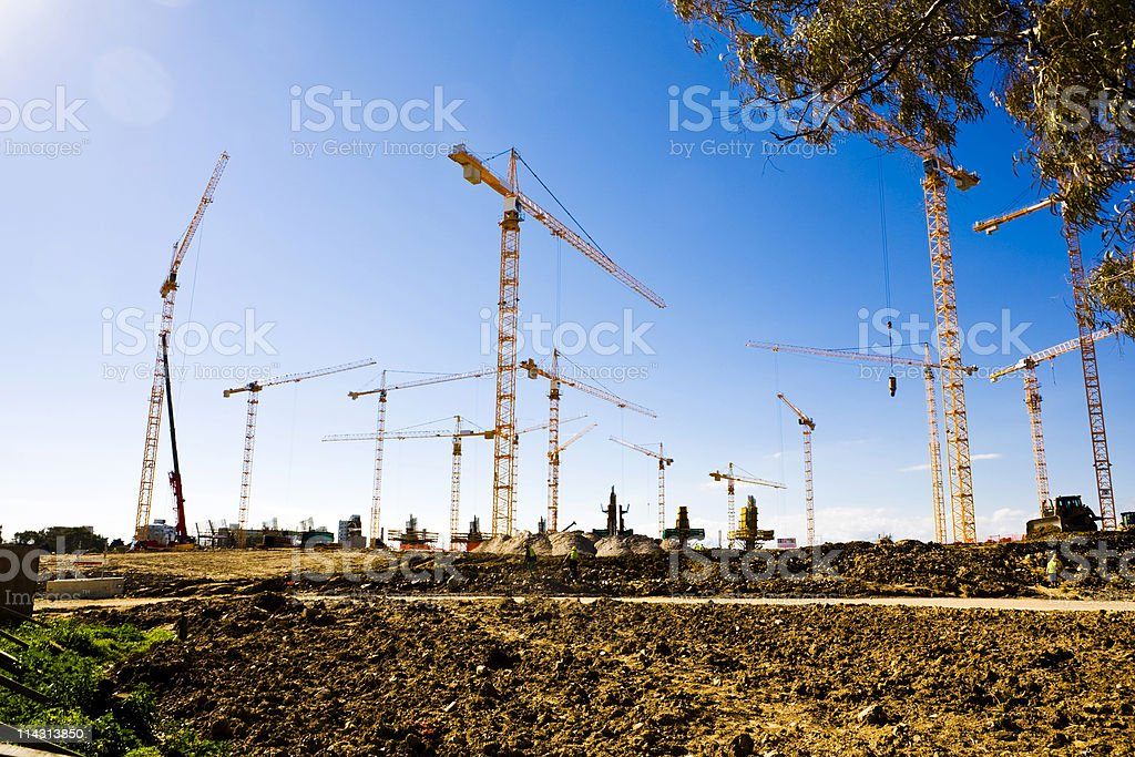 Forest of cranes (series) stock photo