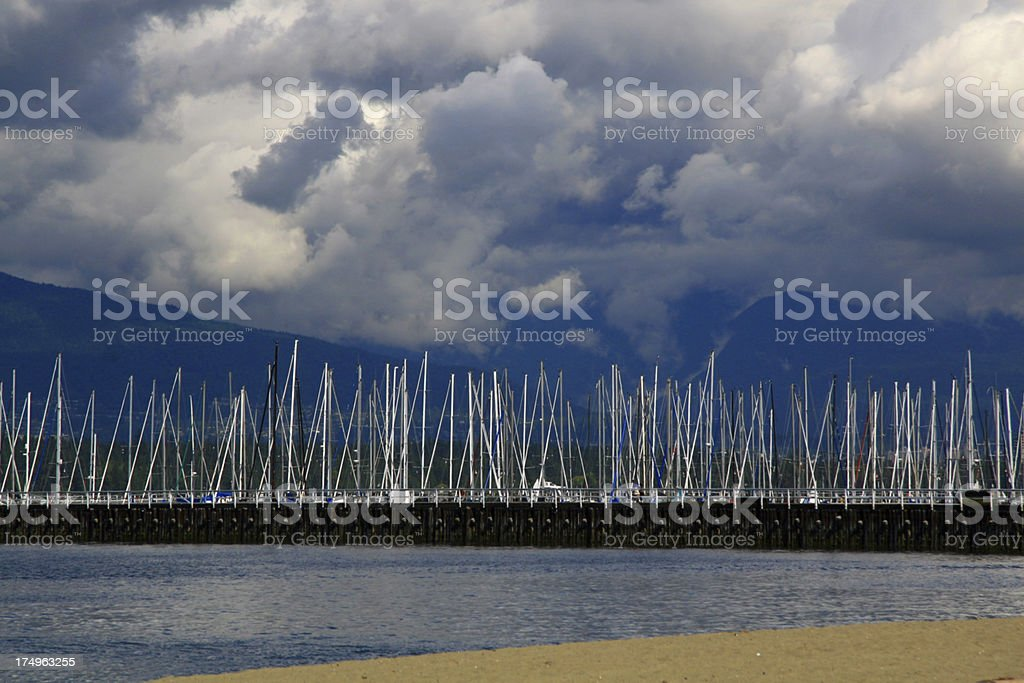 Forest of Masts royalty-free stock photo