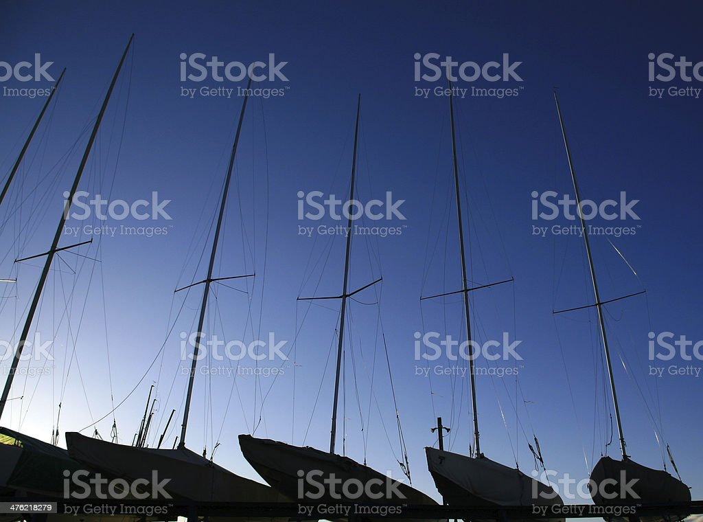 Forest of Masts stock photo