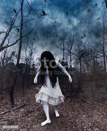 istock Forest of the darkness 950306492