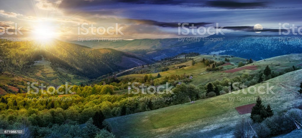 forest on a mountain hillside in rural area. day and night change stock photo