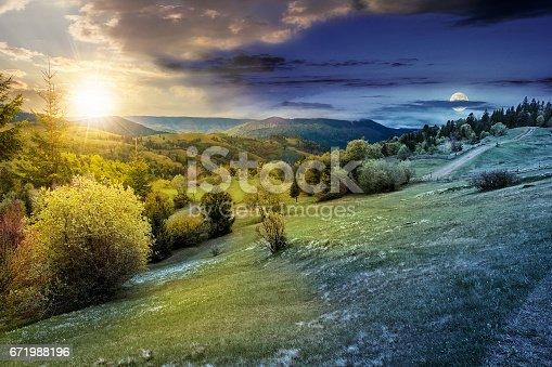 1074120624 istock photo forest on a mountain hillside in rural area. day and night 671988196