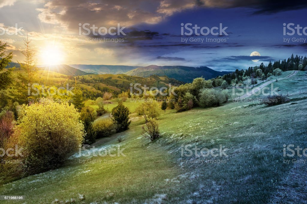 forest on a mountain hillside in rural area. day and night stock photo